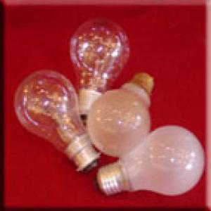 Bulbs (Lamps)