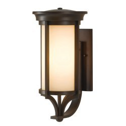 Merrill 1 Light Medium Wall Lantern